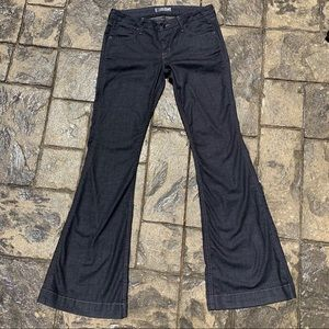 Hudson Flare Jeans | Gemini Dark Wash | Size 30